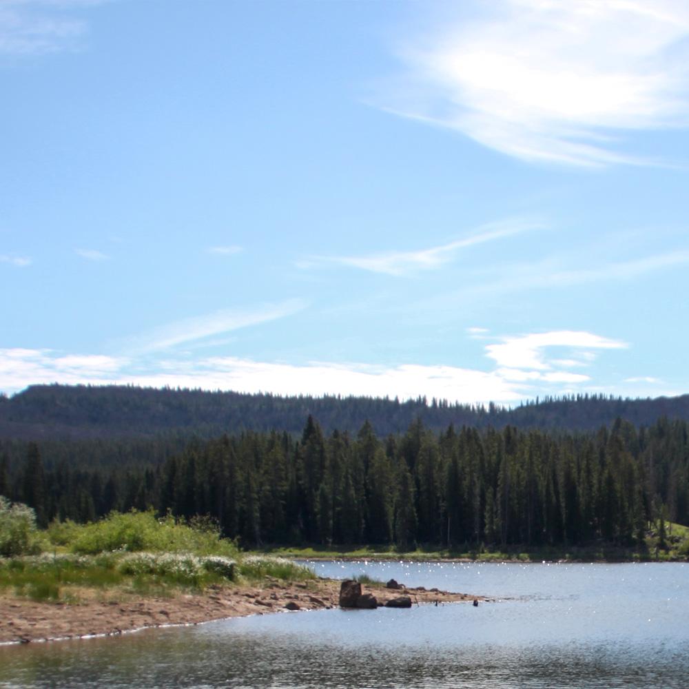 Battlement Mesa River view
